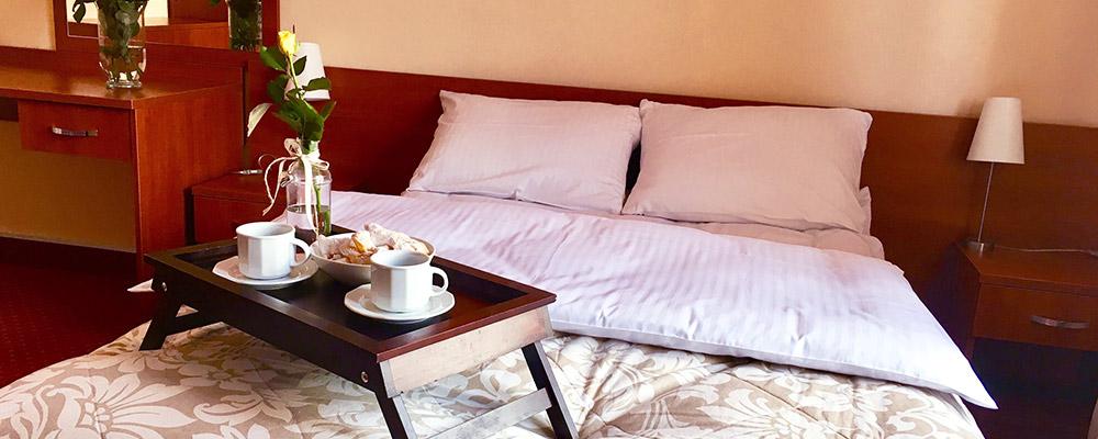 Apartament w Hotelu Gryf